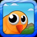 Big Eyed Bird Adventure Gold